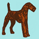 airedale.org